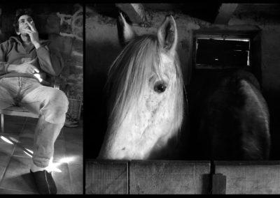 Courtincom - photographie de Didier et ses chevaux