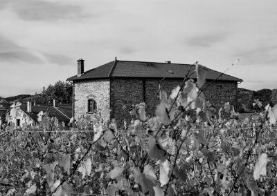 Reportage photographique-Vignoble Perras-Domaine